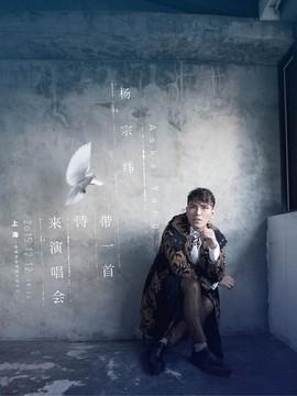 """杨宗纬""""带一首诗来""""世界巡回演唱会上海站"""