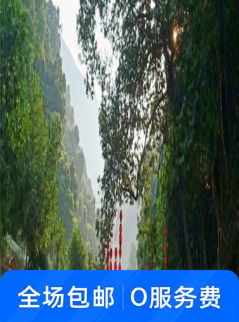 安溪龙门森林公园