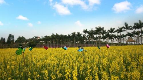 惠州永记生态园(成人票)