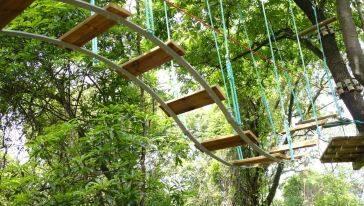飞越丛林探险乐园