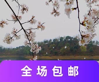 武宁花源谷