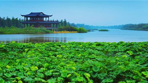 潘安湖湿地公园