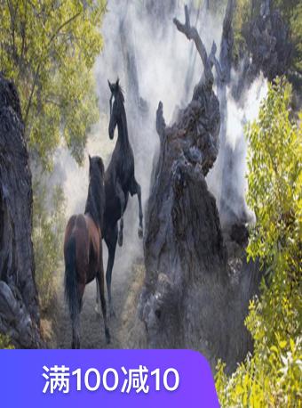 新疆古生态园