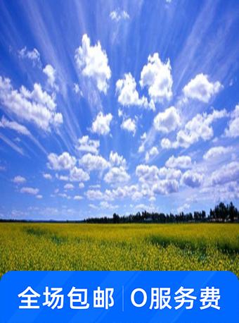 张北中都草原