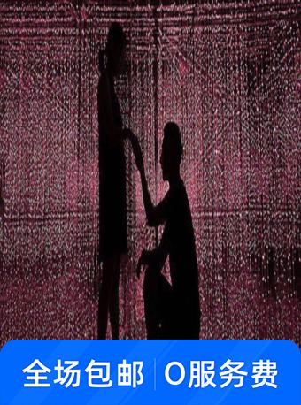 南门口印象梵高星空艺术展
