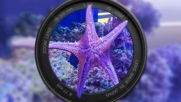南宁海底世界8