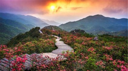 浏阳大围山国家森林公园2.jpg