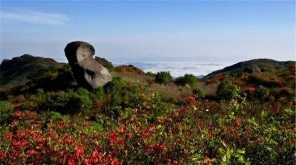 浏阳大围山国家森林公园7.jpg