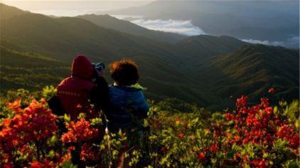 浏阳大围山国家森林公园6.jpg