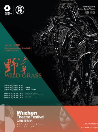 2021年第八届乌镇戏剧节 《野草》