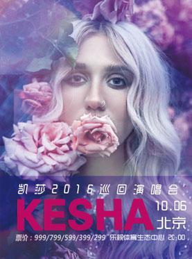 【万有音乐系】凯莎 KeSha北京演唱会