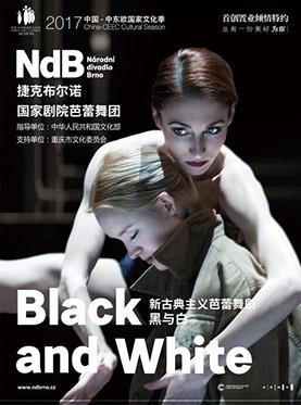 国际芭蕾舞 黑与白