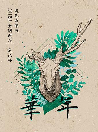 鹿先森乐队武汉演唱会