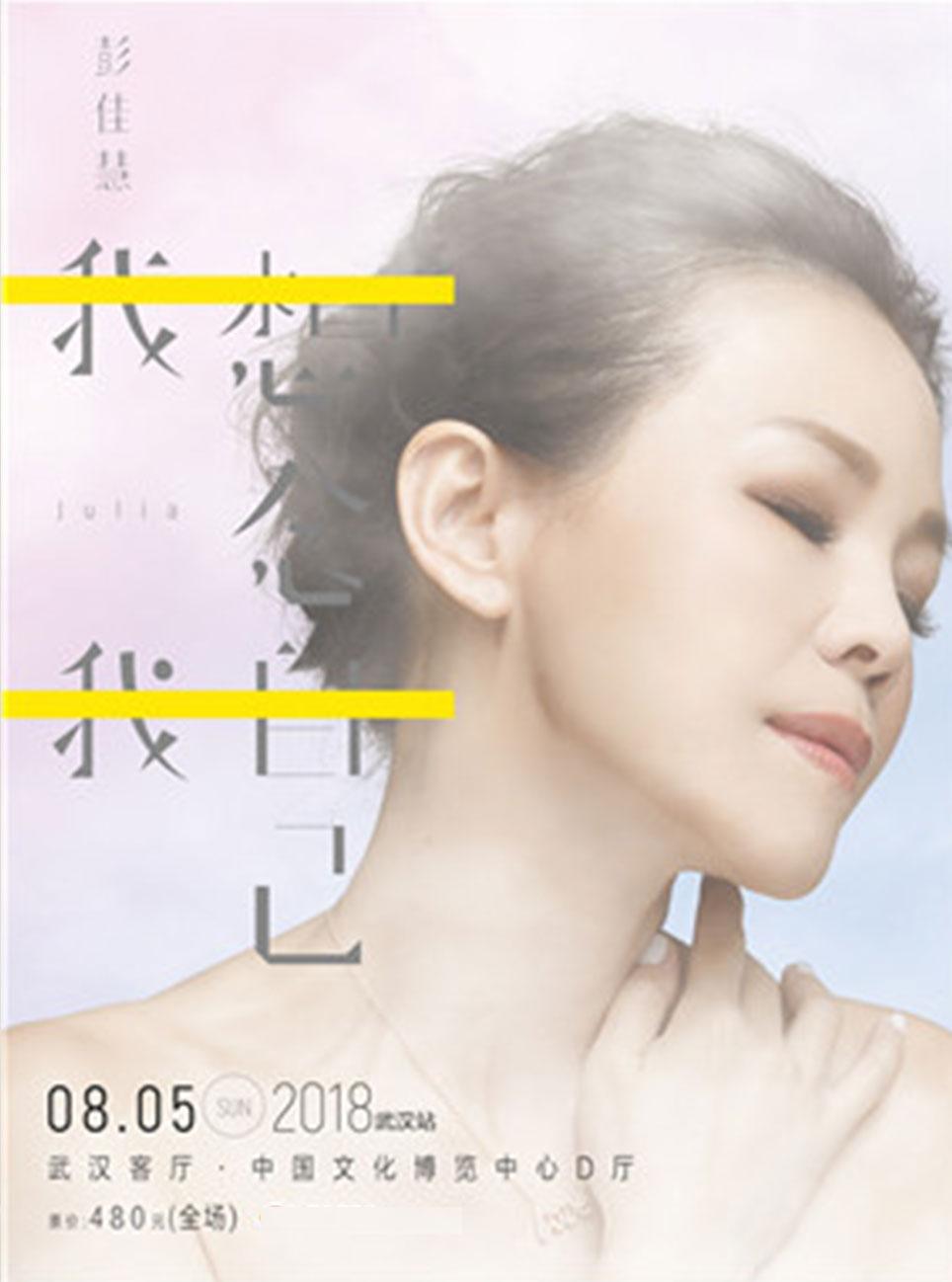"""""""我想念我自己"""" 2018年彭佳慧巡回演唱会武汉站"""