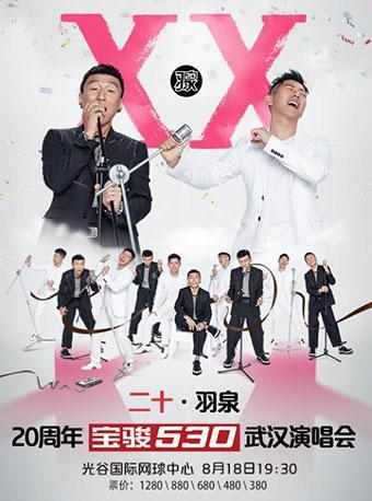 二十•羽泉20周年巡回演唱会 武汉站