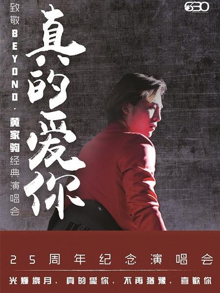 黄家驹25周年纪念上海演唱会
