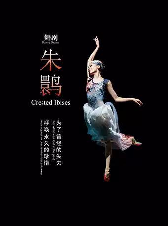 上海歌舞团 舞剧《朱鹮》