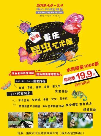重庆昆虫艺术展