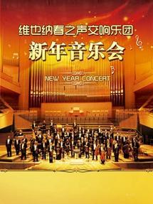维也纳春之声交响乐团 新年音乐会