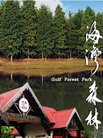 上海海湾国家森林公园荷花节