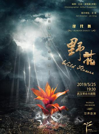 上海金星舞蹈团 《野花》