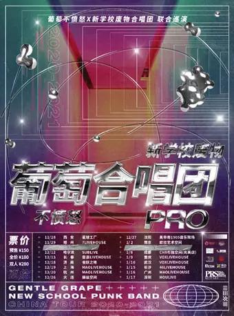 葡萄合唱团PRO巡演 武汉站