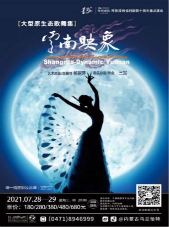 【呼和浩特】杨丽萍经典作品大型原生态歌舞集《云南映像》