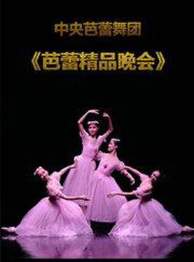 中央芭蕾舞团 《芭蕾精品晚会》