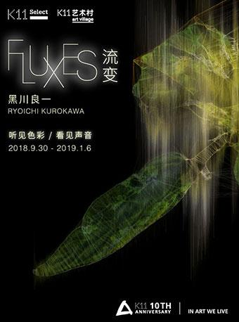 2018流变:黑川良一 艺术展-武汉