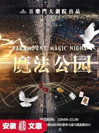 第七届安徽文惠项目--《魔法公园》