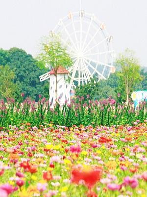 高明盈香生态园