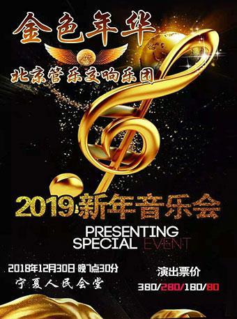 金色年华—2019新年音乐会