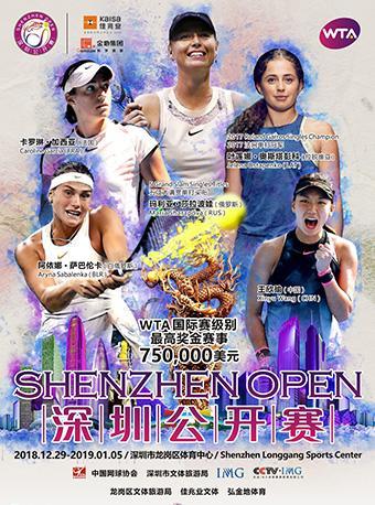 2019 深圳公开赛