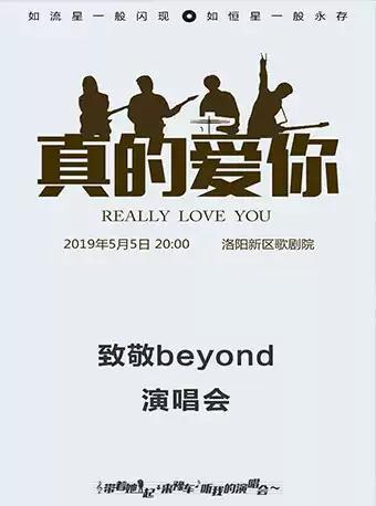 致敬beyond演唱会洛阳站