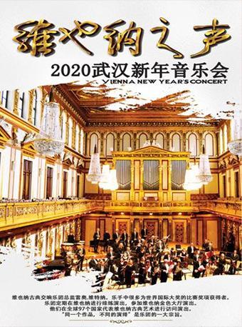 维也纳之声2020武汉新年音乐会 武汉