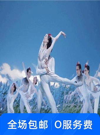 中外芭蕾舞音乐精粹音乐会