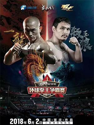 WLF《武林风》环球拳王争霸赛重庆忠县站