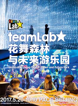 """""""teamLab:花舞森林与未来游乐园"""""""