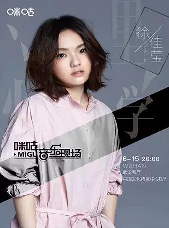 徐佳莹音乐会武汉站
