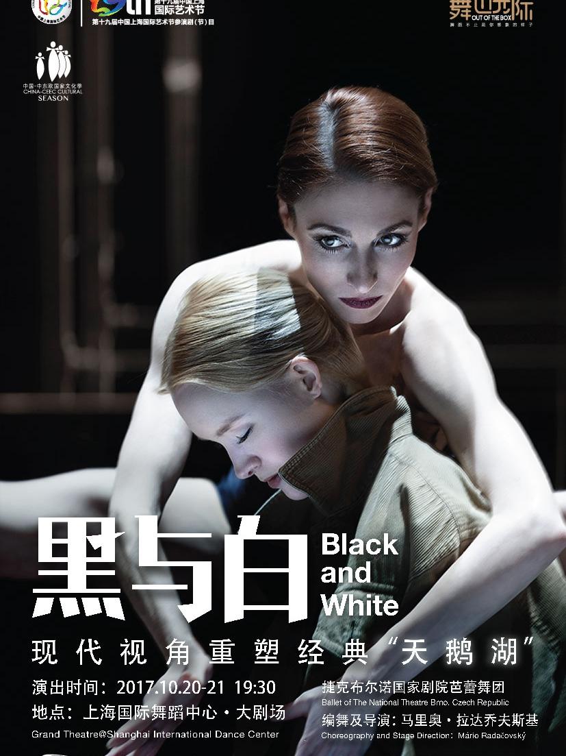 """现代版""""天鹅湖"""" 黑与白"""