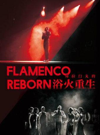 西班牙舞蹈《弗拉门戈的浴火重生》