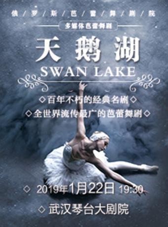 俄罗斯多媒体芭蕾舞剧《天鹅湖》武汉站