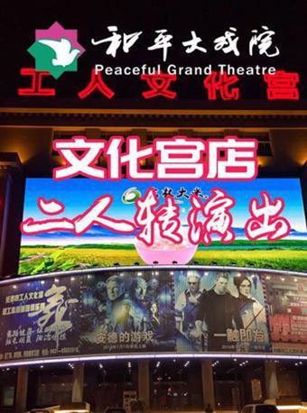 和平大戏院文化宫店二人转演出票