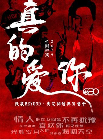 致敬BEYOND·黄家驹演唱会 昆明站