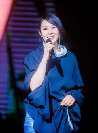刘若英演唱会蚌埠站  1元优惠通道