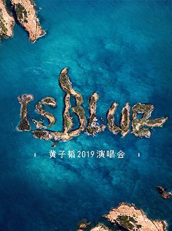 黄子韬2019上海演唱会
