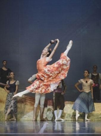 哥伦比亚国家芭蕾舞团《堂吉诃德》
