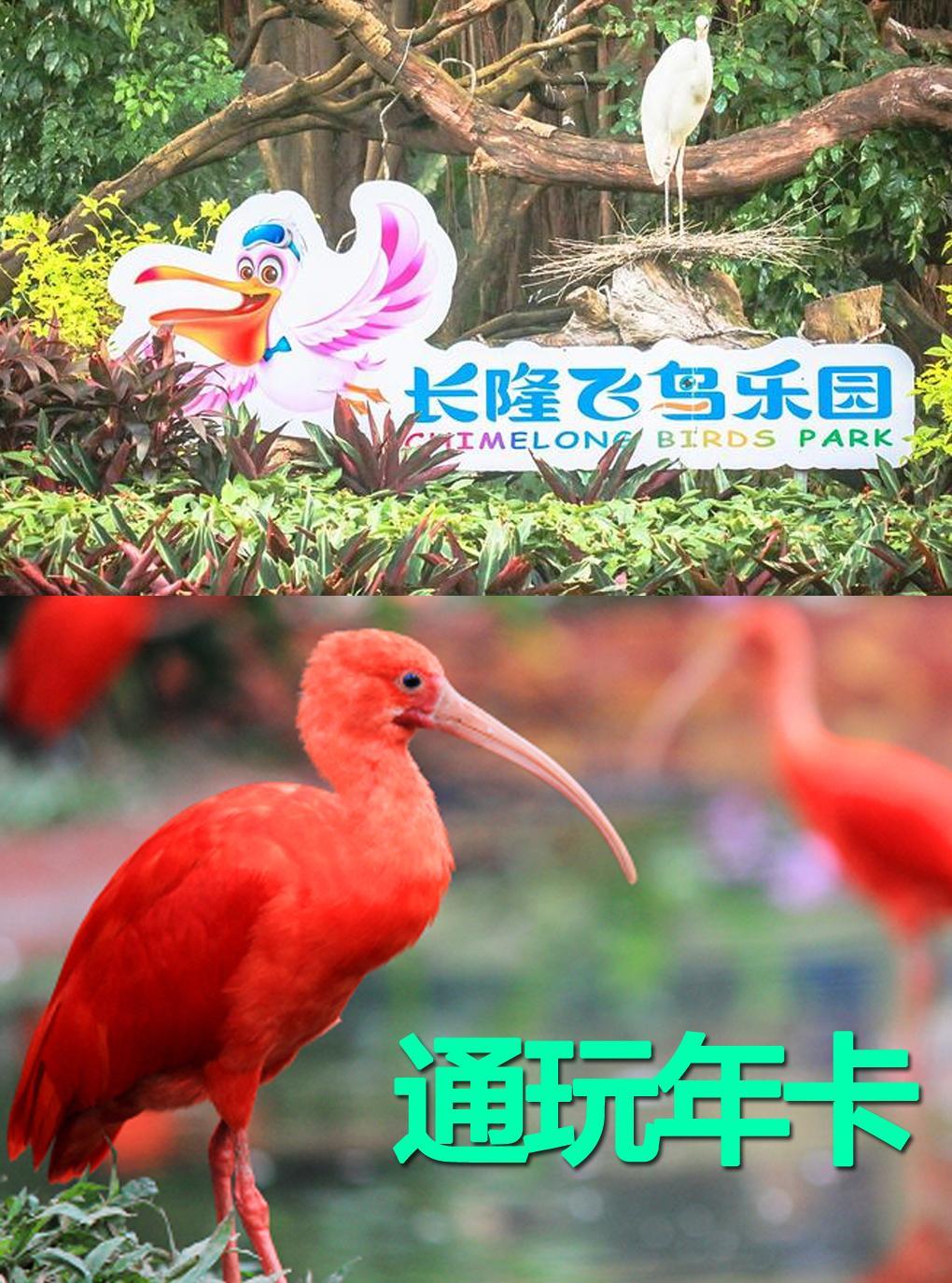 [广州长隆飞鸟乐园-通玩年卡