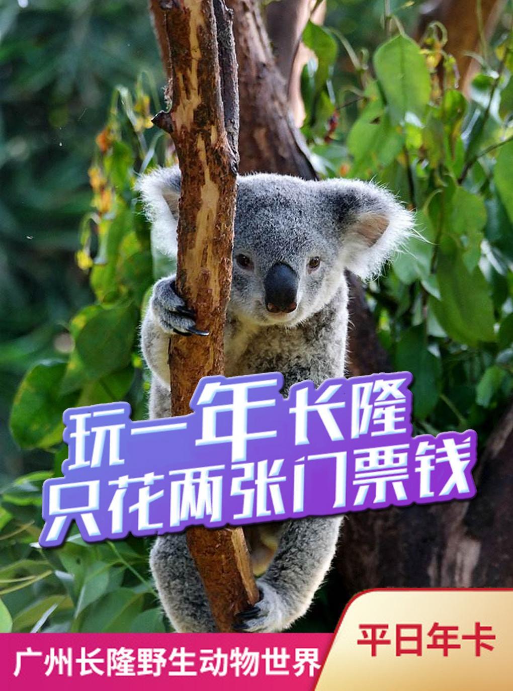特惠|广州长隆野生动物世界-年卡