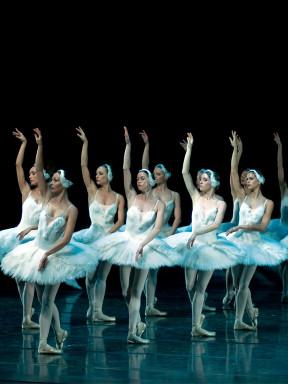 立陶宛国家歌剧舞剧院芭蕾舞团《天鹅湖》